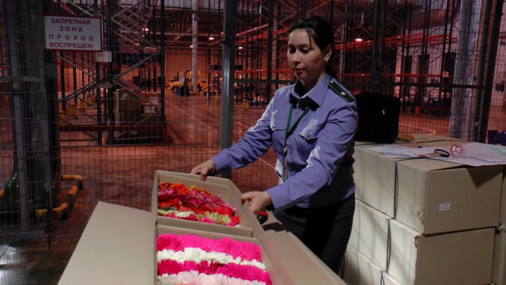 В Самару к 8 Марта на самолетах доставили более 2 тонн цветов