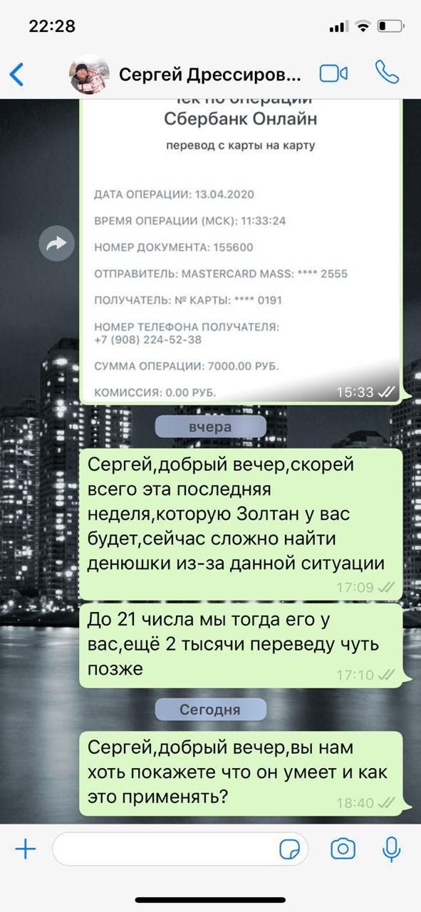 В апреле Кристина перевела Сергею деньги за услуги. Подтверждение перевода скинула ему в личной переписке