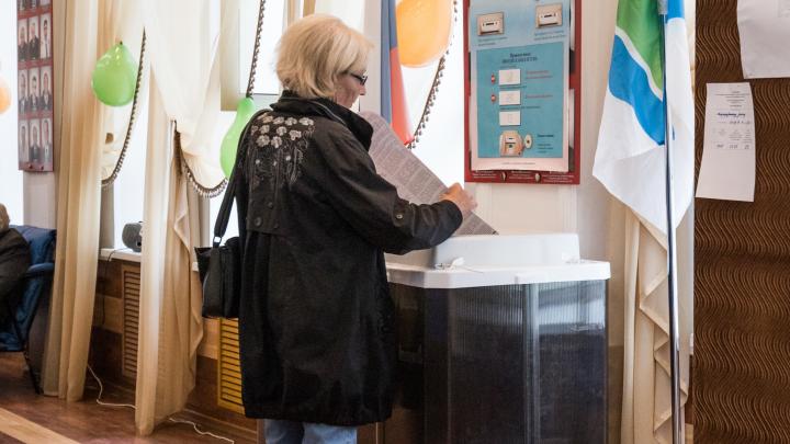 Выборы-2020. Как найти свой избирательный участок в Новосибирске — три очень простых способа