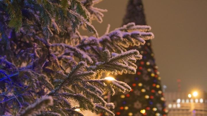 В оперштабе Архангельской области оценили вероятность ужесточения ограничений в Новый год
