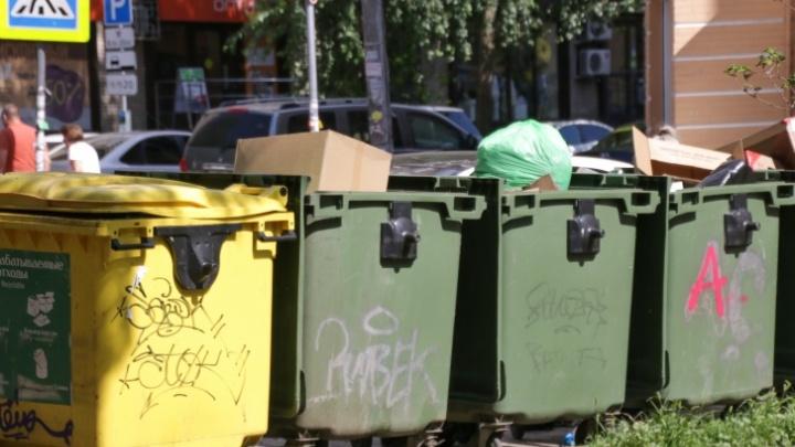 В Ростовской области ввели раздельный сбор мусора. На самом деле нет