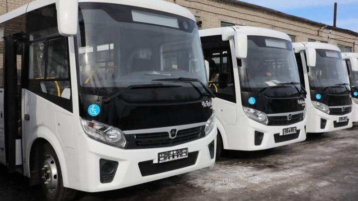 В Архангельск пришли 12 новых автобусов