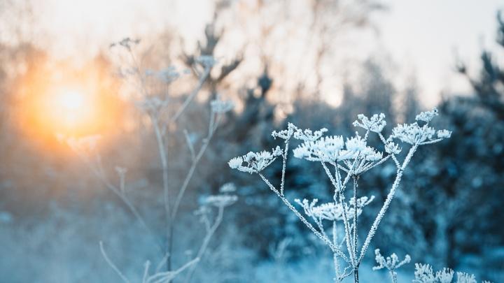 Синоптики Кузбасса рассказали, где зафиксировали самую низкую температуру и когда уйдут морозы