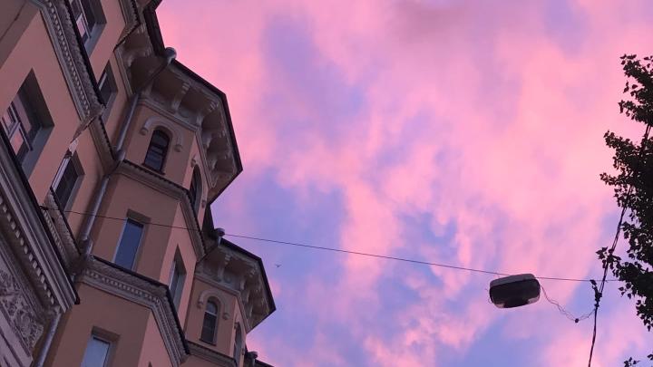 Бросить все и уехать за город: смотрим фотографии «золотого» заката в Волгограде