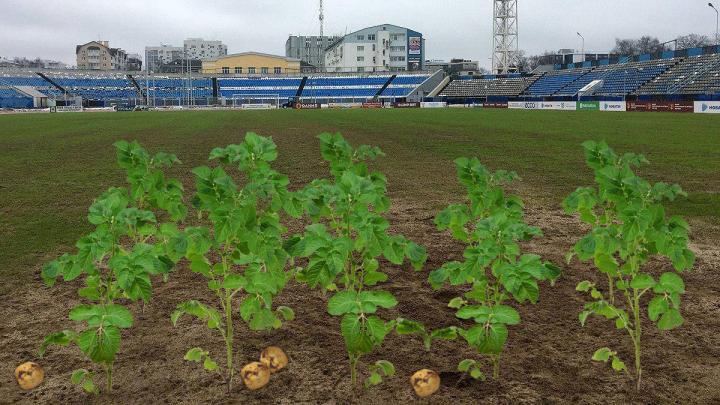 «Хуже, чем огород»: важнейший кубковый матч «Урала» и «Шинника» перенесли из-за ужасного состояния поля