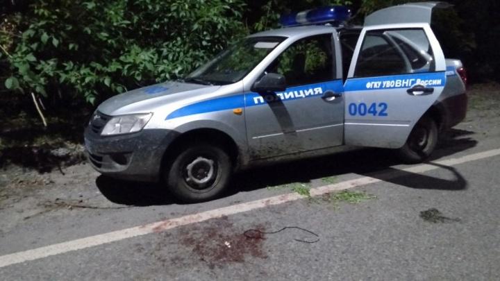 Велосипедисту за стрельбу в тюменского силовика грозит пожизненный срок