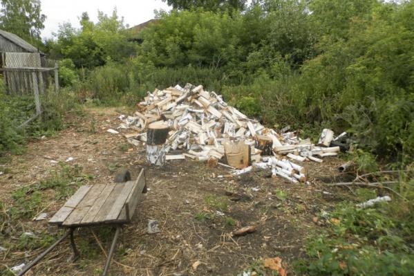 По месту жительства подозреваемого оперативники нашли спиленный лес