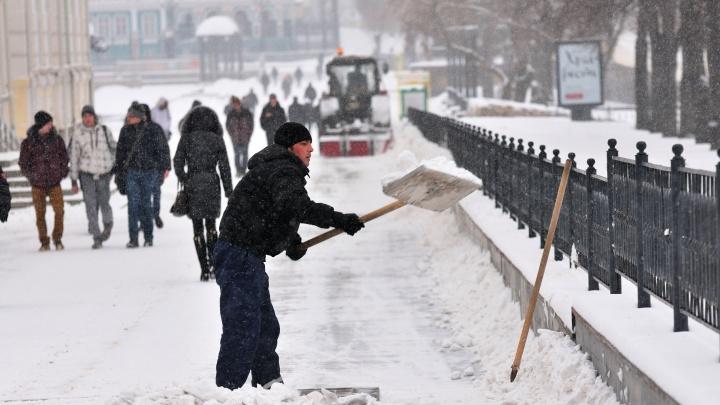 Екатеринбургский депутат предложил заставить безработных отрабатывать свои пособия