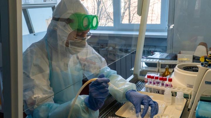 В Самарской области нашли 66 новых заразившихся коронавирусной инфекцией