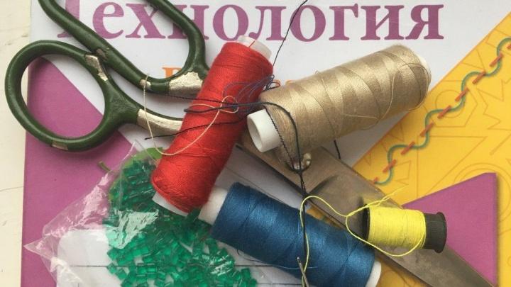 Простите, а где взять пяльцы? Екатеринбургским школьникам задали на дом вышивку крестиком