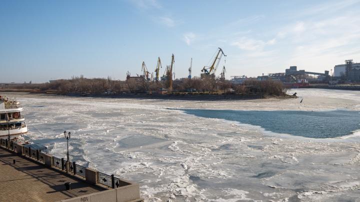 Замерзшая река и нахохлившиеся утки: фотопрогулка по зимнему Дону