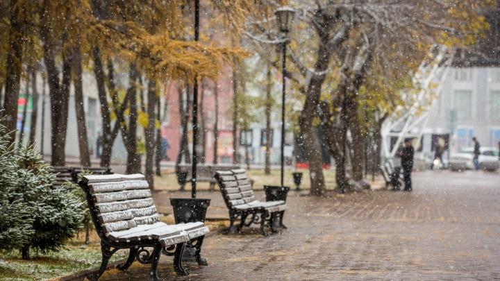 Температура в Новосибирской области опустится до -9 градусов