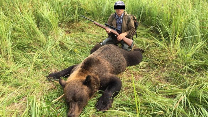 Сибиряк выложил фото с охоты на медведя в соцсети и попал под суд