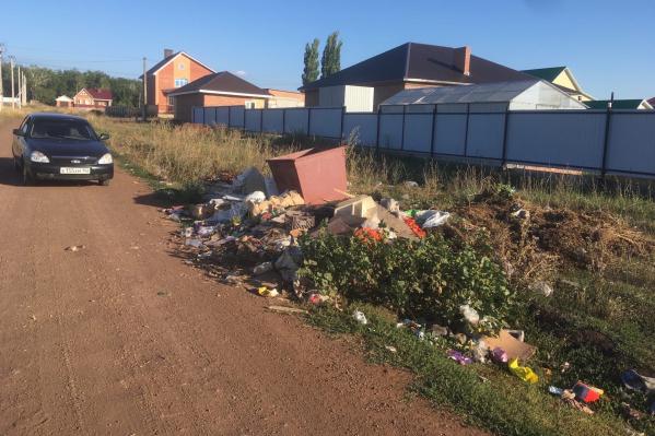 Эту фотографию деревенский житель отправил Хабирову как доказательство бездействия местных чиновников