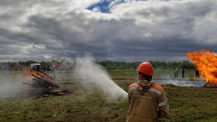 За 5 месяцев в Архангельской области произошло 55 лесных пожаров