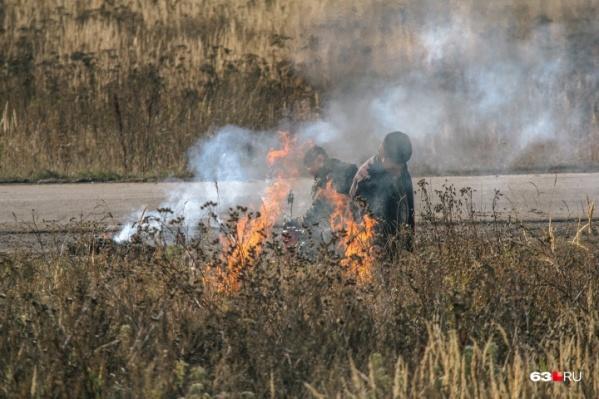В регионе участились лесные пожары