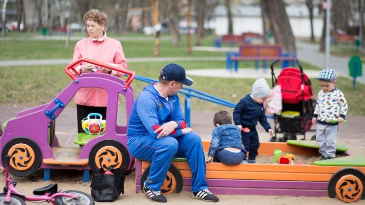 В Ярославской области запустили онлайн-сервис для оформления пособия на детей от 3 до 7 лет