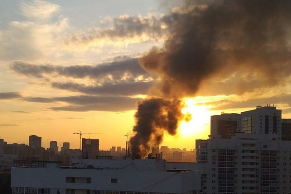Дым от пожара было видно издалека