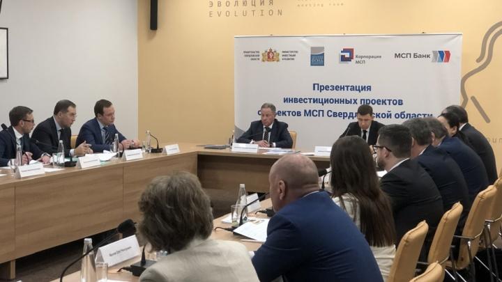 В Екатеринбурге выбрали 4 бизнес-проекта, которые получат поддержку в1млрд рублей от МСП Банка