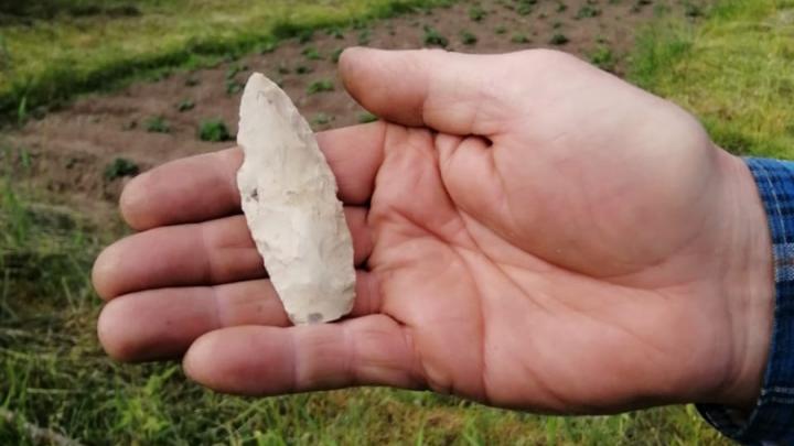 Житель Кенозерья нашел в огороде наконечник от оружия древнего человека