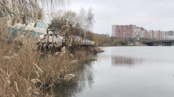 Тело школьницы нашли на берегу Северного водохранилища в Ростове