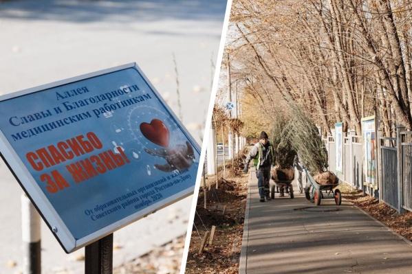 Аллея славы и благодарности медработникам появилась неподалеку от Ростовской областной клинической больницы<br>
