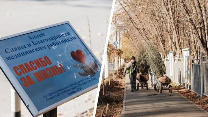 В Ростове появилась аллея благодарности врачам