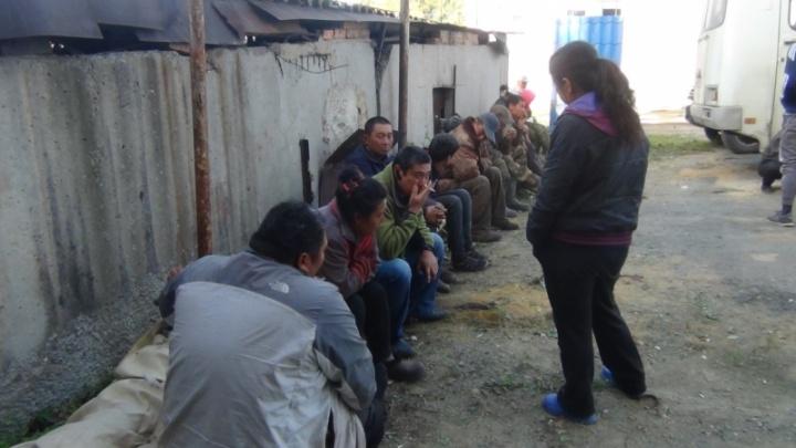 В Челябинске осудили группировку, организовавшую приезд на Южный Урал более 100 нелегалов