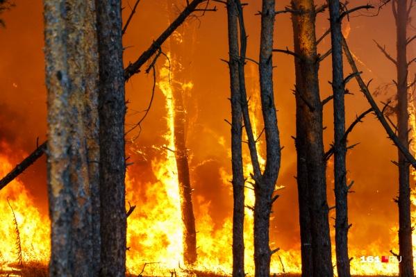 Крупные лесные пожары в регионе вспыхивают с начала сентября