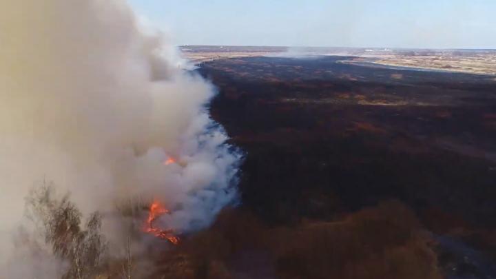 Пожарная тревога: в Нижегородской области в 20 раз увеличилось количество возгораний травы