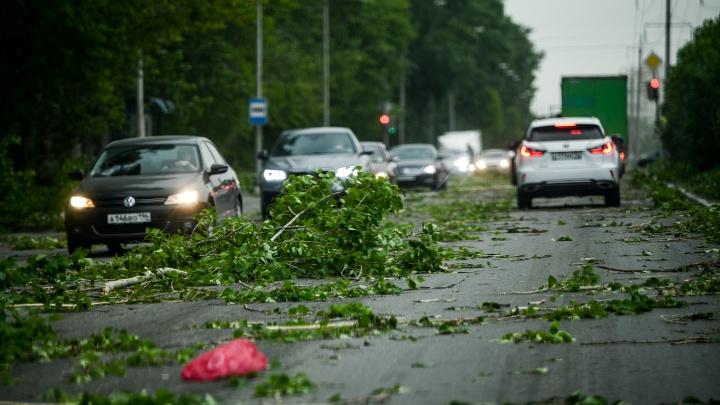 На Свердловскую область надвигаются ливни и сильный ветер