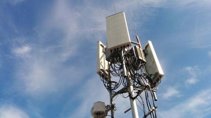 Tele2 первой из операторов предоставила связь в Павловске