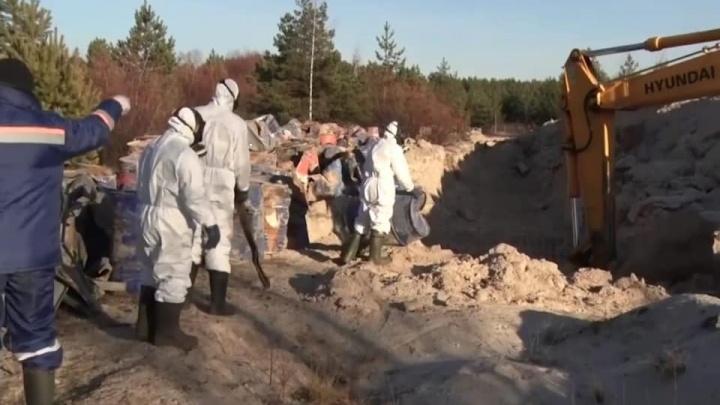 Свалку химических отходов в Володарском районе устранят к следующему четвергу