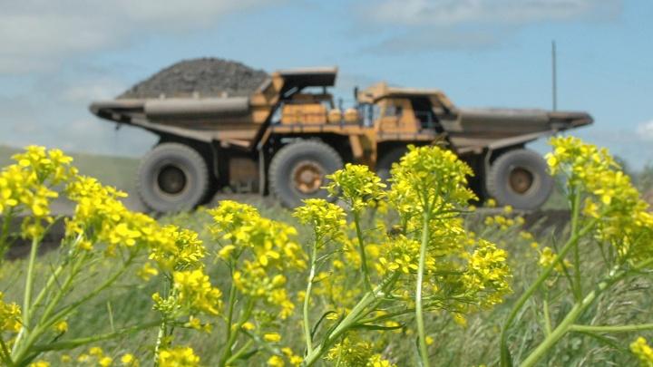«Кузбассразрезуголь» получил крупный штраф за нанесение серьезного вреда экологии региона