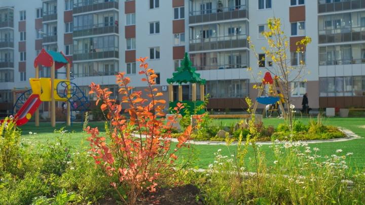 «Что с ними не так?»: 4 квартиры в Екатеринбурге продадут по непривычно доступной цене