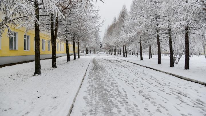 Контракты заключены: где и за сколько в Архангельске благоустроят парки, скверы и аллеи в 2021 году