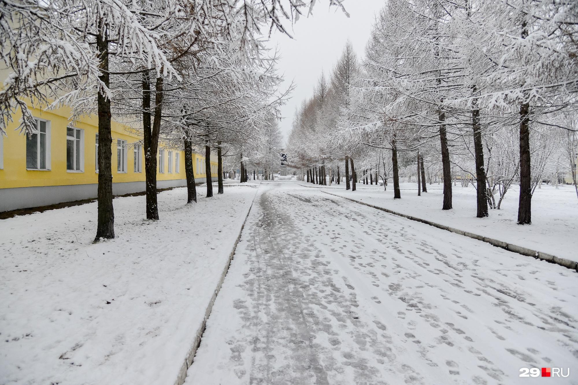 Вдоль административной части ФОКа приятно прогуляться. Парковка не забита машинами, очень тихо — совсем не так, как в центре Архангельска