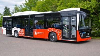 Минтранс ищет перевозчика на четыре автобусных маршрута в агломерации Перми