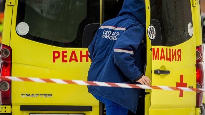В Новосибирской области снизилась смертность от коронавируса — статистика Росстата