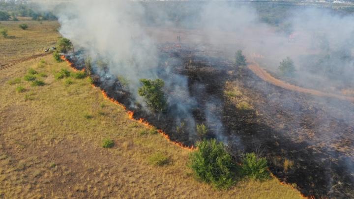 Караулить будут всю ночь: в Волгограде и области взяли под контроль все степные пожары