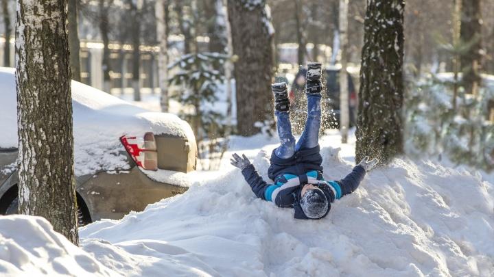 Власти назвали сроки зимних каникул для ярославских школьников