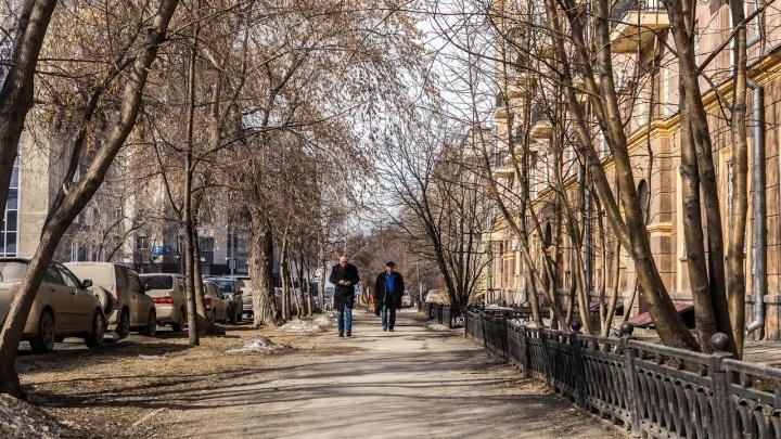 До +18 градусов потеплеет в Новосибирске и области к концу следующей недели