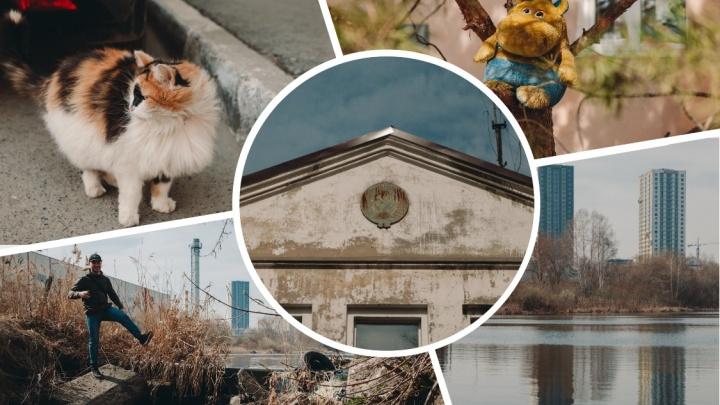 Причалы у многоэтажек, английская мельница и туалеты посреди улицы: гуляем по Мельзаводской