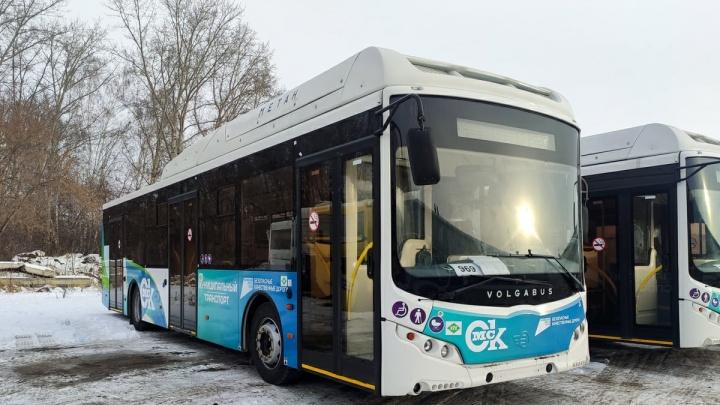 В Омск отправили 15 больших автобусов на метане