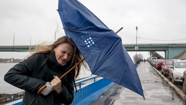 Экстренное предупреждение от МЧС: на Ярославль обрушатся мощный ветер и арктический холод
