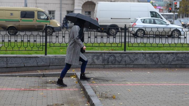 Ветер не утихнет: в Свердловской области продлили штормовое предупреждение