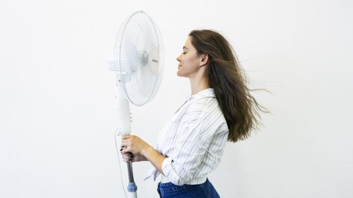 Спрос вырос в 10 раз: в магазинах Екатеринбурга из-за жары раскупили вентиляторы