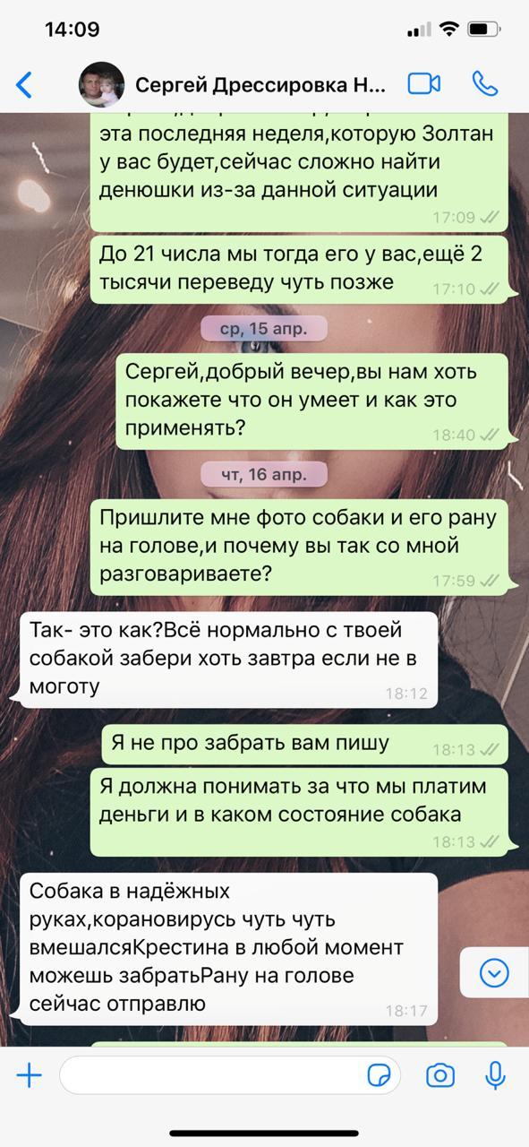 На просьбы показать животное Сергей Федосеенко утверждал, что с ним всё в порядке