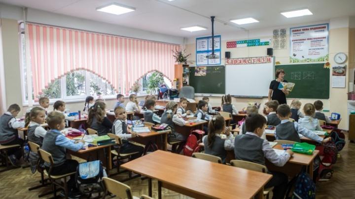 «Никто не заставляет никого»: сфера образования в НСО приближается к коллективному иммунитету