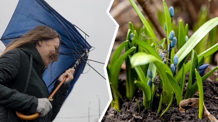 Последний рецидив зимы: синоптики сообщили о резких изменениях погоды на этой неделе